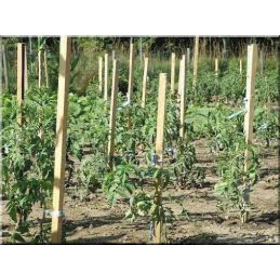 Akáckaró, termesztőkaró 2,5x2,5x180cm