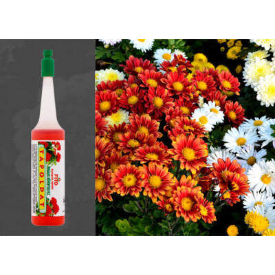 Fito virágos növények részére önadagolós virág csepegtető
