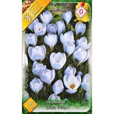 crocus virághagyma 15-db-os Blue Pearl