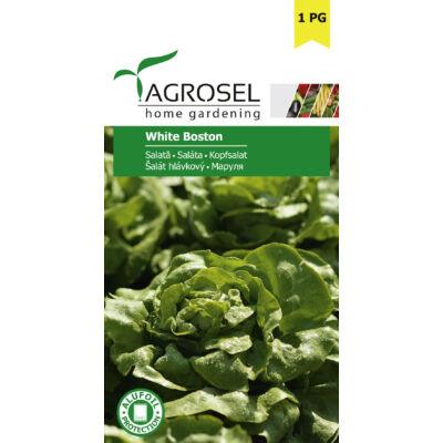 Agrosel White Boston Saláta 1,75g