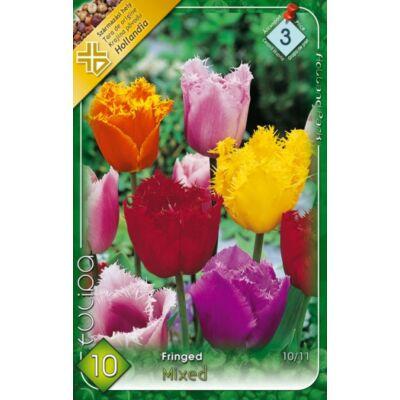 Tulipán virághagyma 10-db-os fringed mix