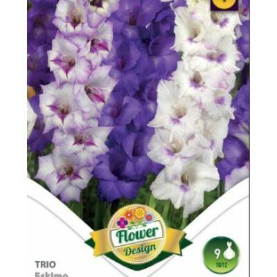 Kardvirág Gladiolus  EskimoTrio 9db/cs