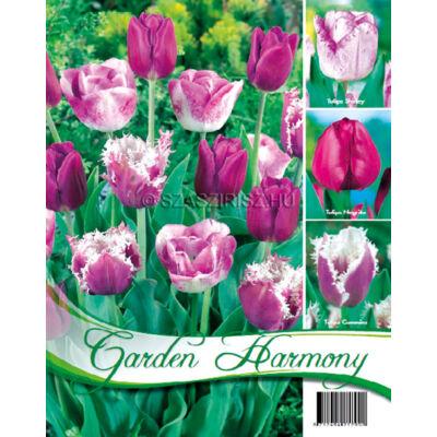 Tulipán virághagyma 18-db Purple mix