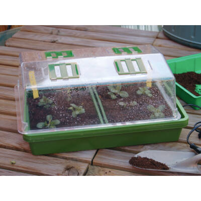 Nortene Rapi Grow 38x24x18cm Mini üvegház