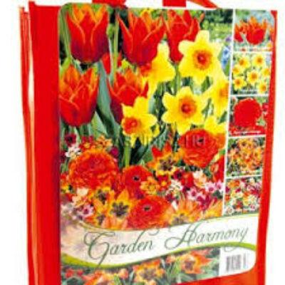 Garden harmony  vegyes virághagyma kollekció narancssárga 50db-os