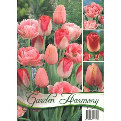 Tulipán virághagyma 18-db-os Pink