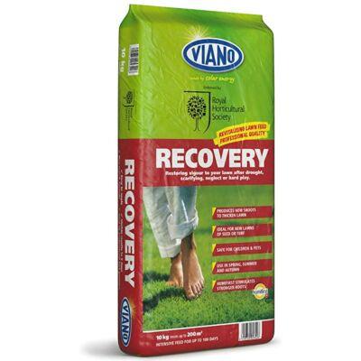 VIANO Recovery gyeptrágya felülvetéshez, gyepesítéshez 6-8-13+3Mg 10Kg