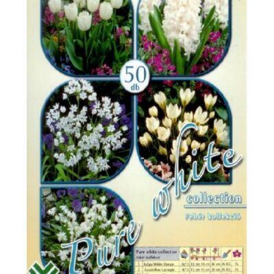 Virághagyma mix Pur White 50-db-os