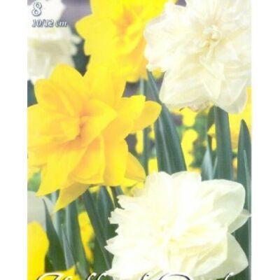 Nárcisz virághagyma 8-dbos Wihite Yellow